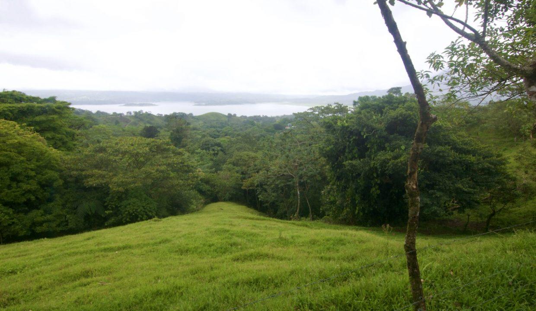 Obregon Land 10