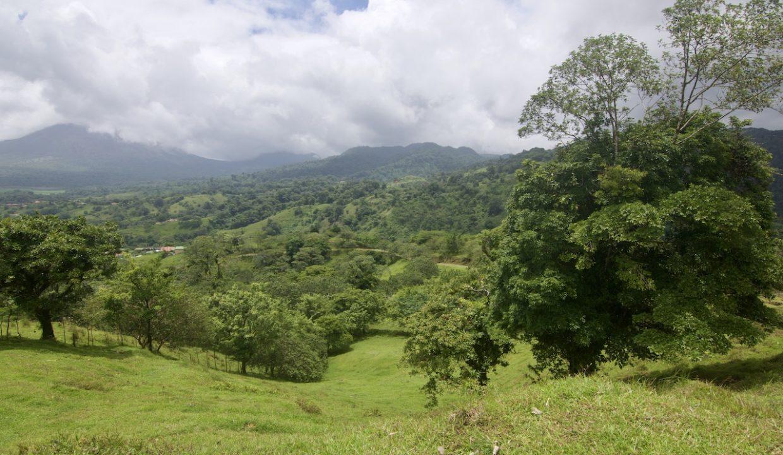 Obregon Land 16