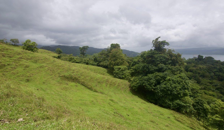 Obregon Land 18