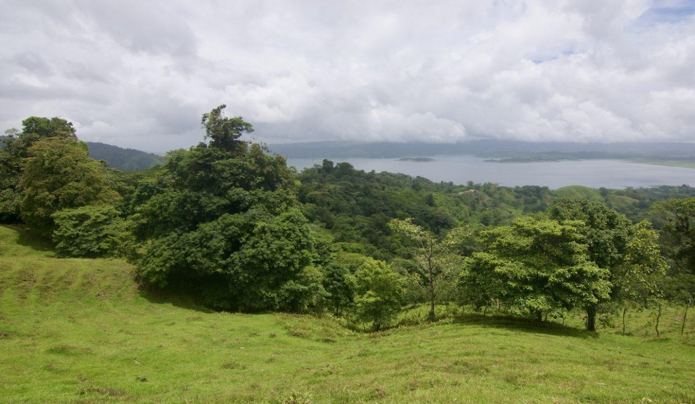 Obregon Land 19