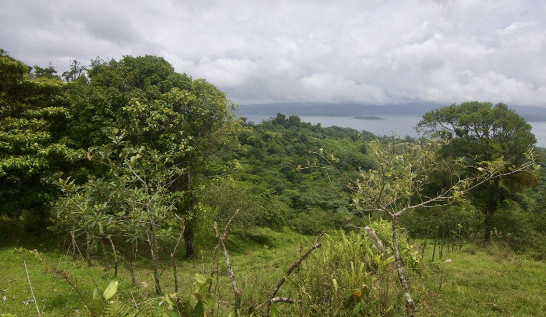 Obregon Land 24