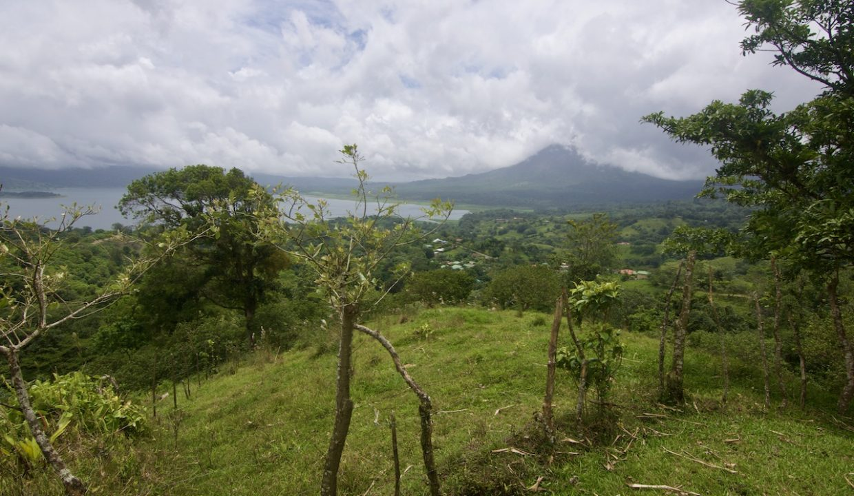 Obregon Land 25
