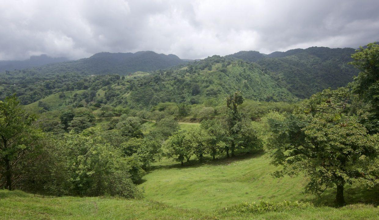 Obregon Land 26