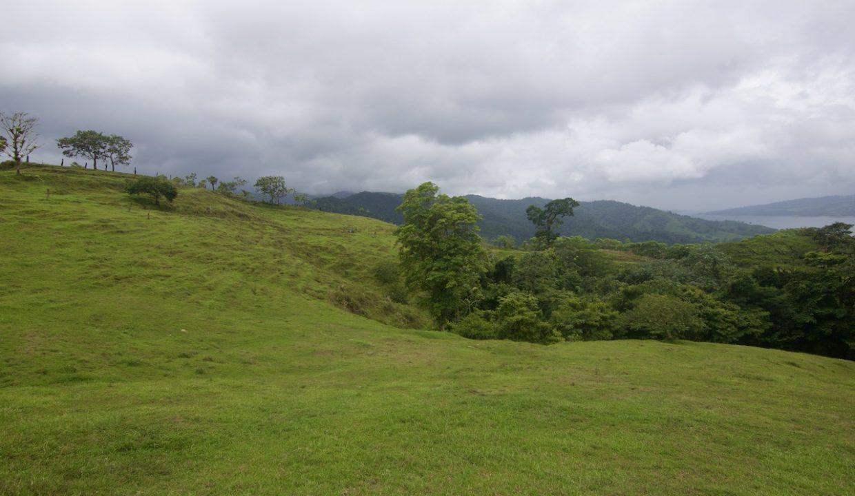 Obregon Land 28