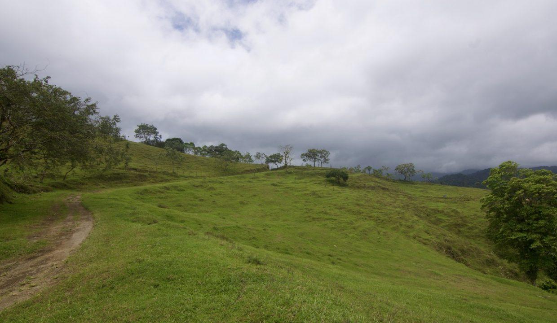 Obregon Land 29
