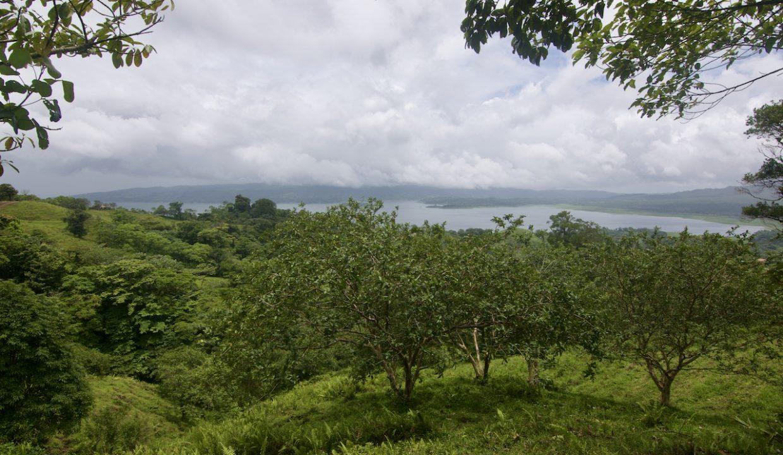 Obregon Land 31