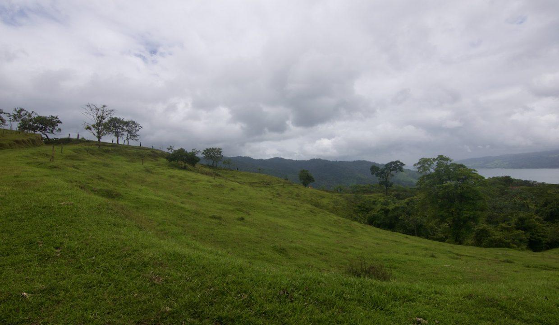 Obregon Land 32