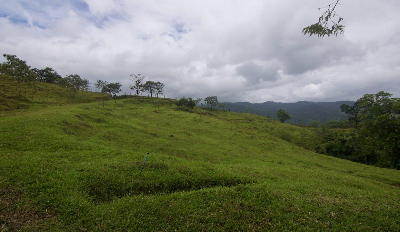 Obregon Land 34