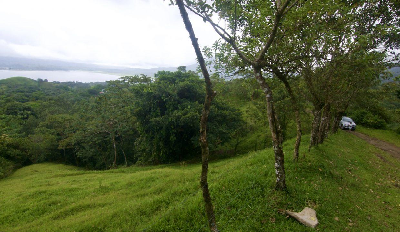 Obregon Land 4