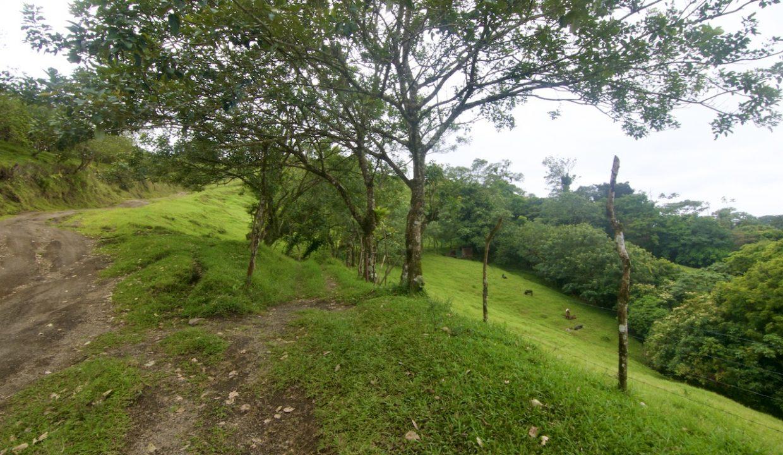 Obregon Land 5