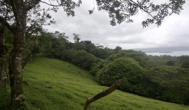 Obregon Land 6