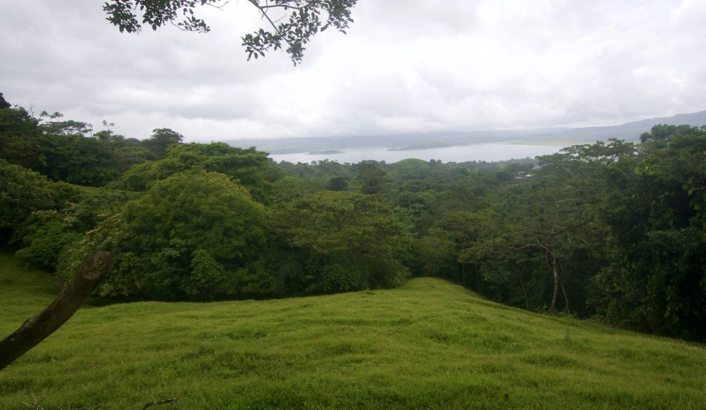 Obregon Land 7