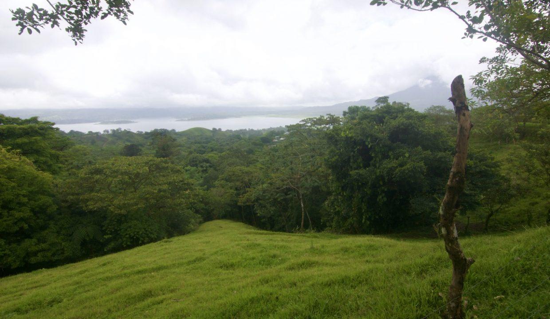 Obregon Land 8