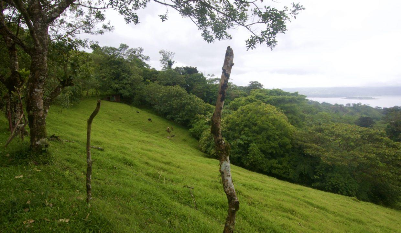 Obregon Land 9